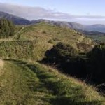 The Mataihuka Walkway above State Highway One