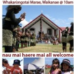 Previous Kapiti celebration of Waitangi Day