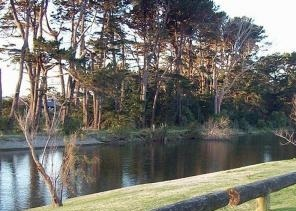 Waikanae River near the land belonging to Patricia Graces
