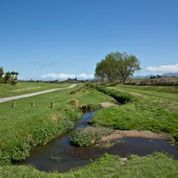 The Wharemauku Stream Track looking west