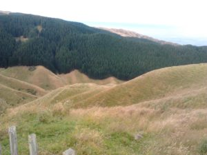 Looking down to the Ramaroa Valley with Mt Wainui on the left.